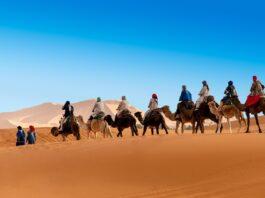 Best adventures in Morocco